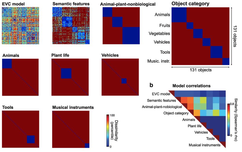 Example RDMs from Clarke & Tyler (2014) 10.1523/JNEUROSCI.2828-13.2014