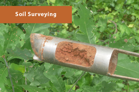 Georgia Soil Testing and Surveying