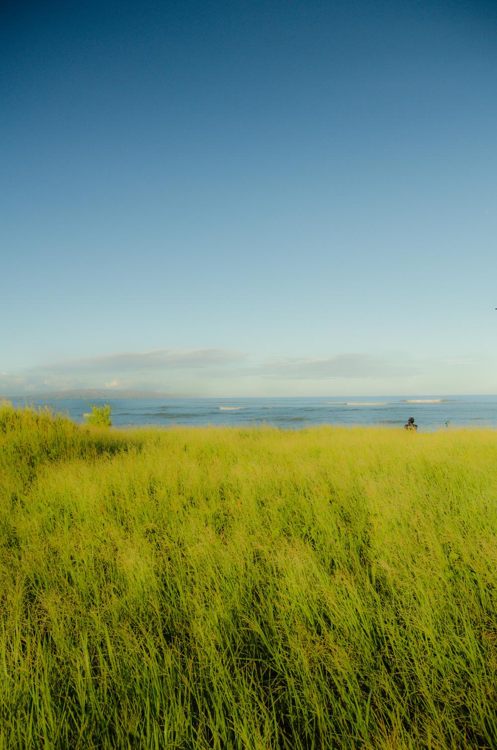 Maui Vacation DSC_7676.jpg