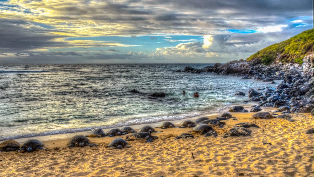 Maui Vacation DSC_7824_3_2photomatix.jpg