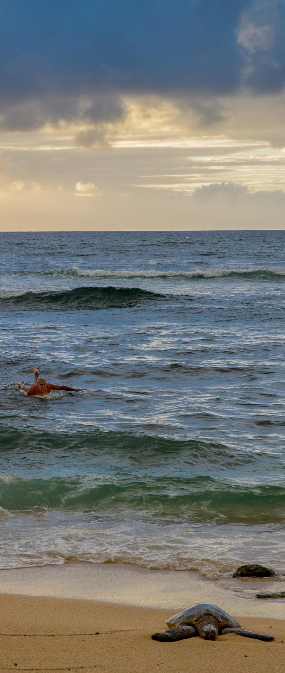 Maui Vacation DSC_7870.jpg