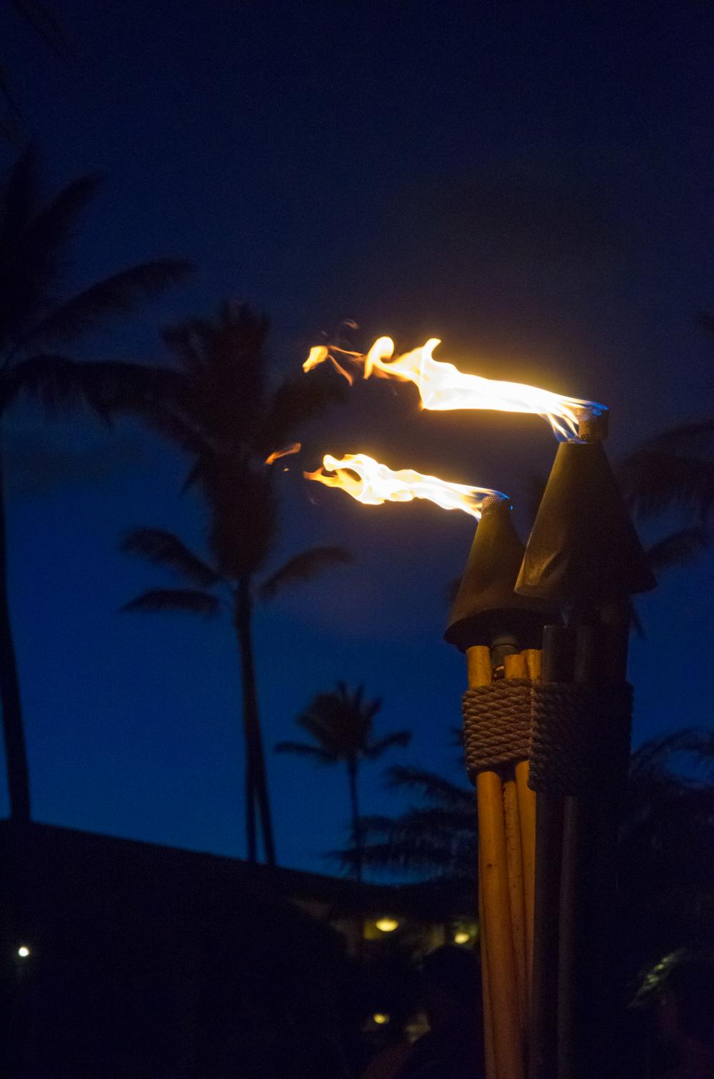 Maui Vacation DSC_8060.jpg