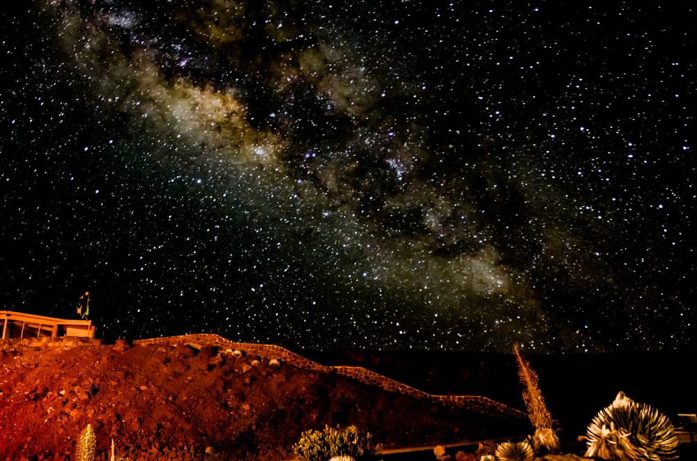 Maui Vacation DSC_8319.jpg