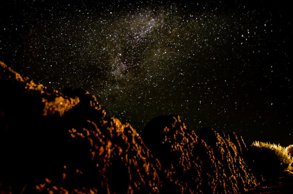 Maui Vacation DSC_8320.jpg