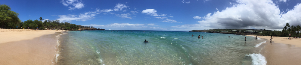 Maui Vacation IMG_0417.jpg
