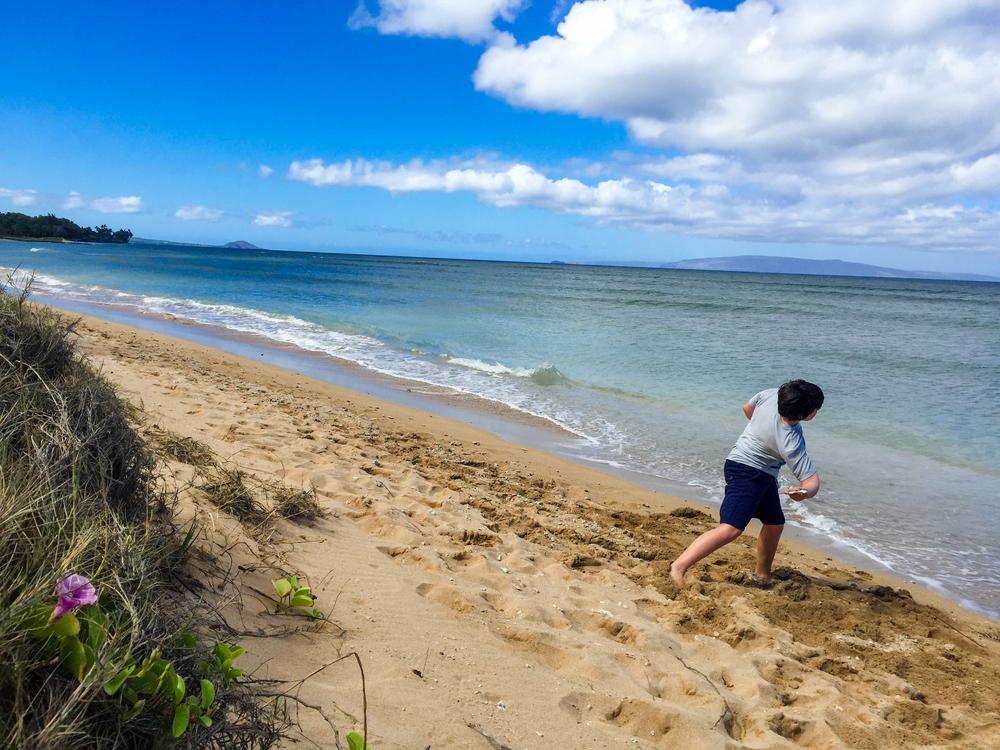 Maui Vacation IMG_0494.jpg