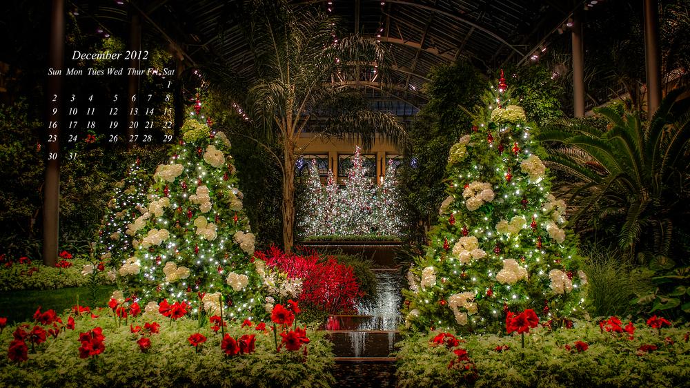 December Calendar final.jpg