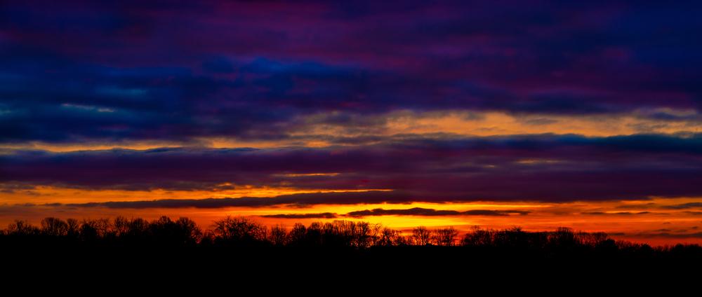 Sunrise in Frozen Cornfield