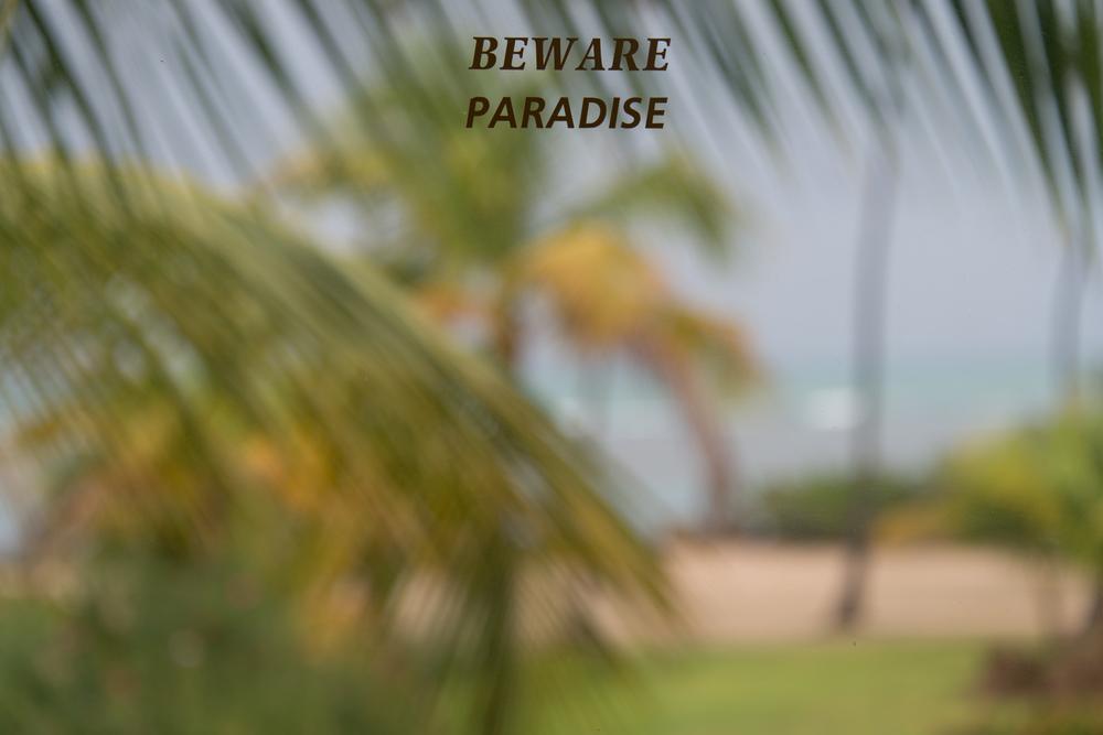 Beware Paradise (1 of 1).jpg