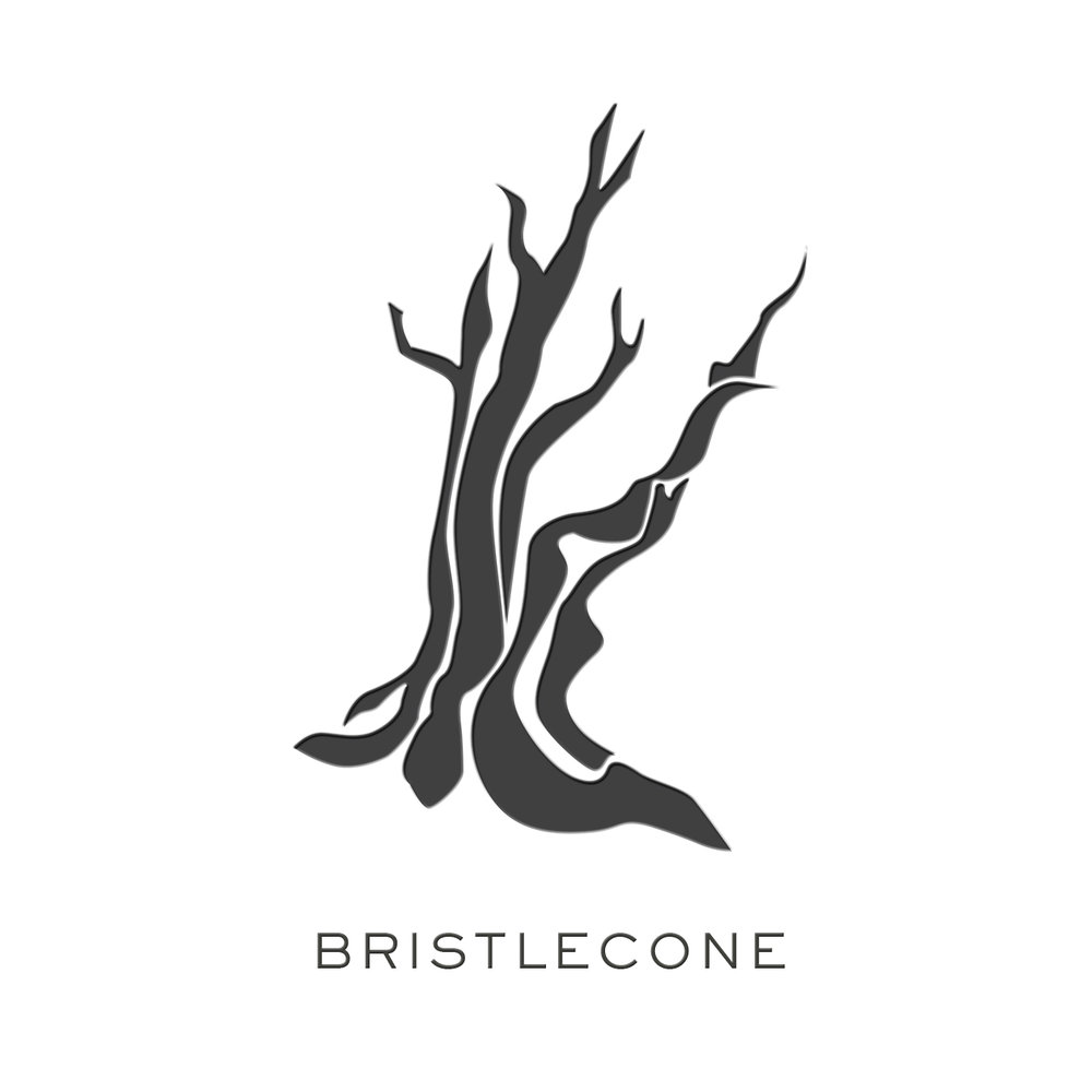 BRISTLECONE_02.jpg