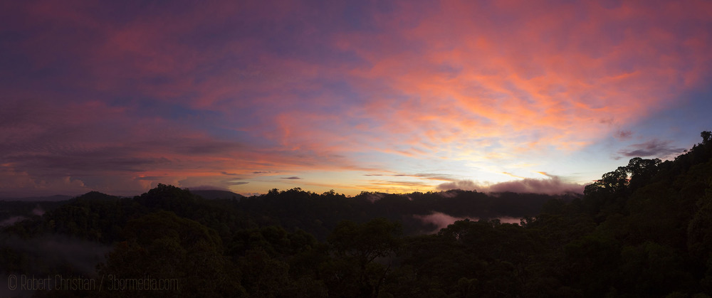 Sunrise at Ulu Temburong National Park.
