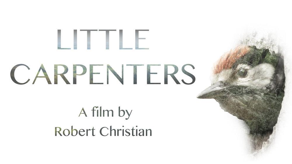 Little Carpenters 1920x1080.jpg