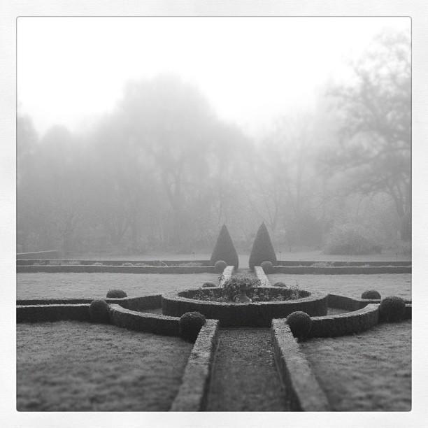 cold-garden.jpg