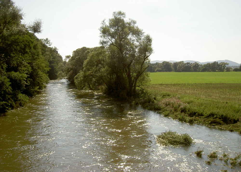 """River Eder near Ederauenradweg FKB2"" by Simone - Own work. Licensed under CC BY 2.5 via Wikimedia Commons - https://commons.wikimedia.org/wiki/File:River_Eder_near_Ederauenradweg_FKB2.jpg#mediaviewer/File:River_Eder_near_Ederauenradweg_FKB2.jpg"