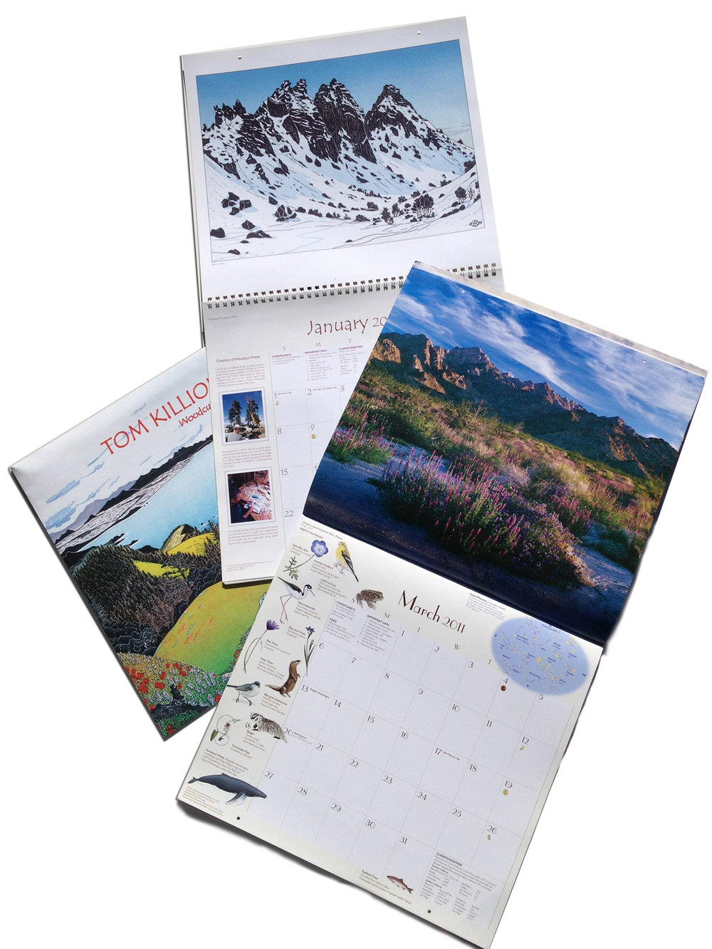 WILD NATURE | art calendars