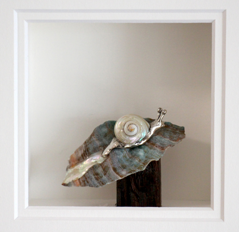 Ohata - snail.jpg