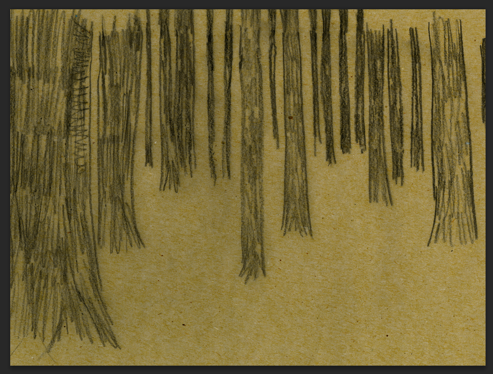 makingof_forest_1.png