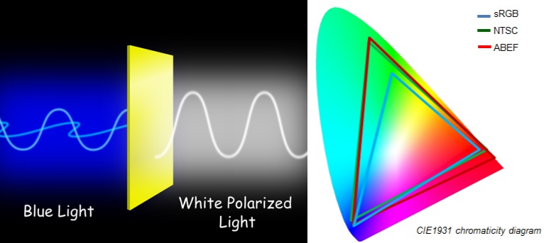 Is led light polarized