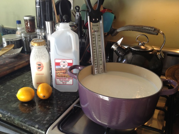 1/2 gal milk, 1/2 c heavy cream, juice from 2 lemons, a heavy bottom pot and a thermometer.