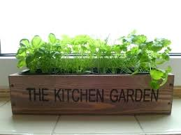 3. PLANT A GARDEN!