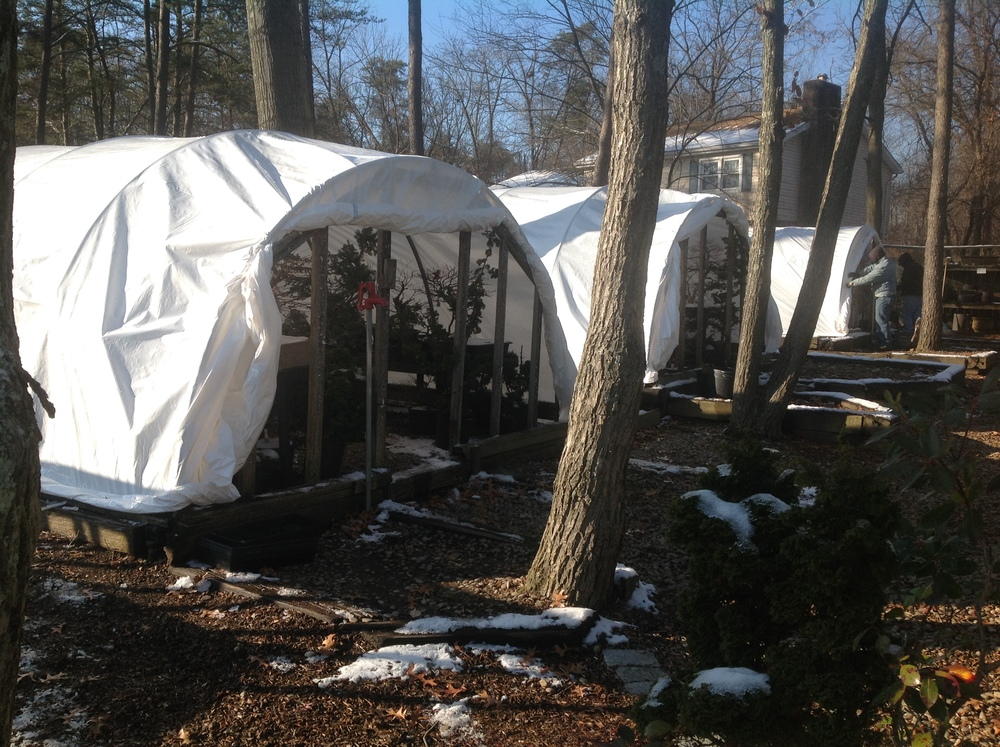 The hoop houses prepped for winter weather.
