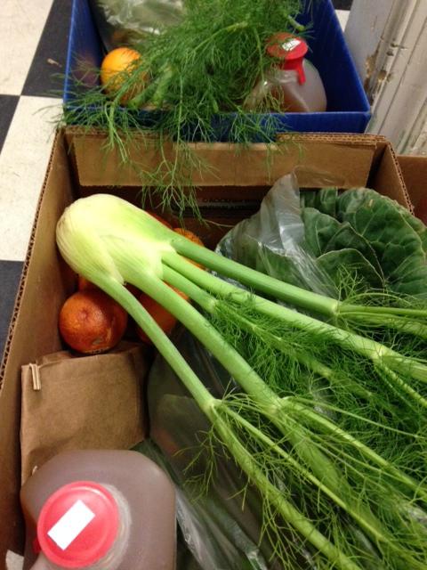 Veggie Boxes!