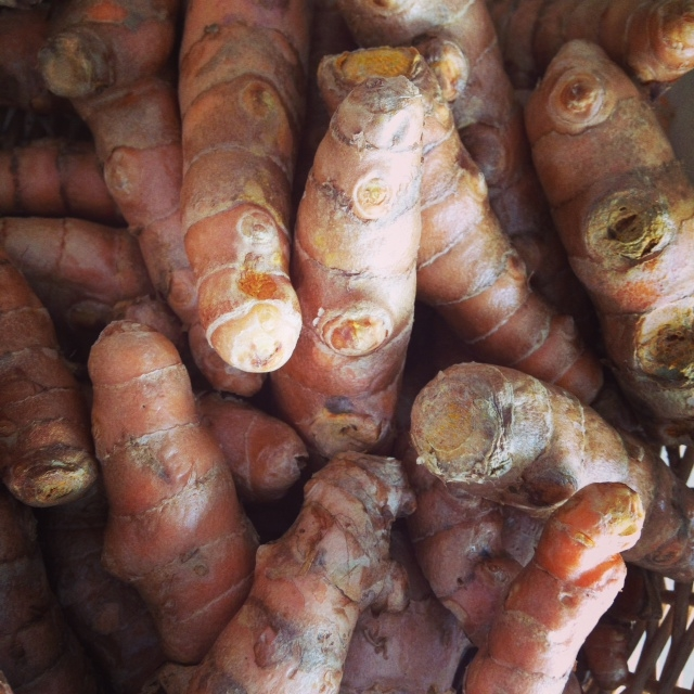.  Fresh turmeric. Photo By Jessica Goldberg