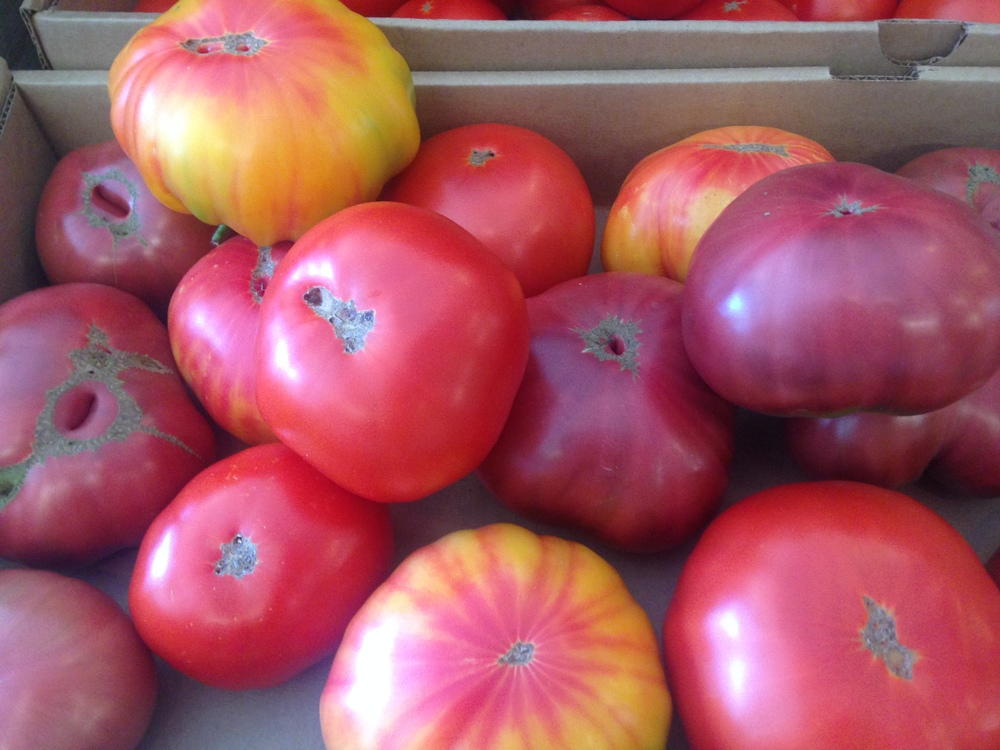 Heirloom tomatoes at Little House Green Grocery