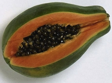 Juicy papaya