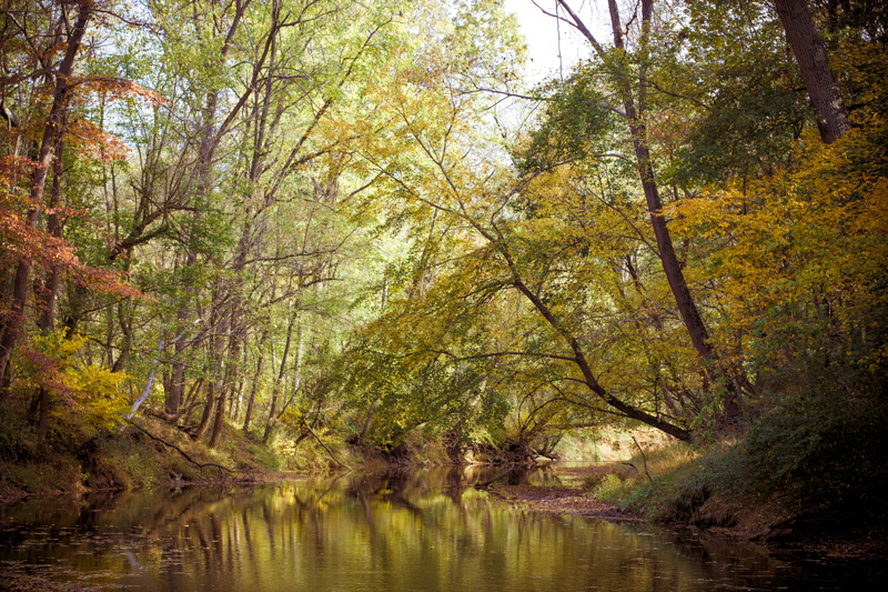The Patapsco River in October