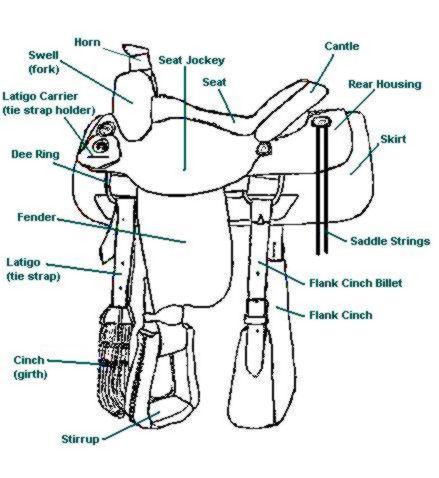 Western Saddle Horseformula