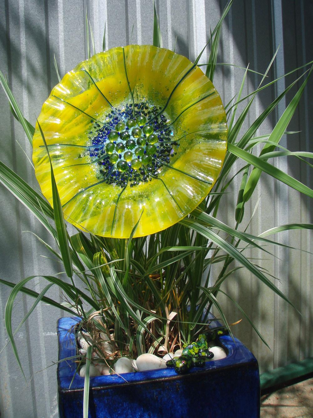 Anderson flower.JPG