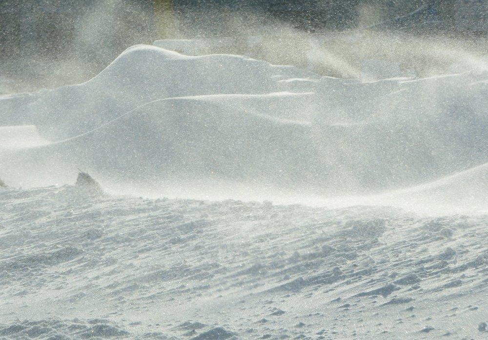 blowing snow.jpg
