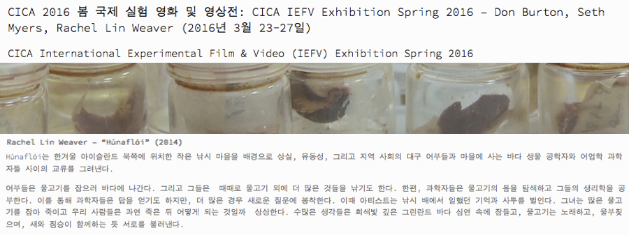 CICA International Experimental Film & Video Exhibition at CICA Museum, Korea