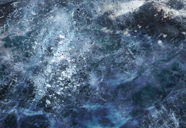 SEA-CHANGE -