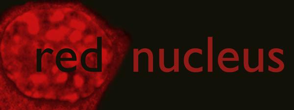 red nucleus-9.jpg