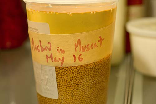 soaking-mustard-seeds