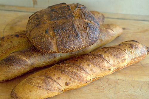 sourdough-loaves