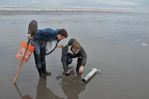 clams-at-the-beach