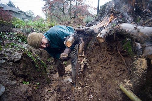 Sawing-stump