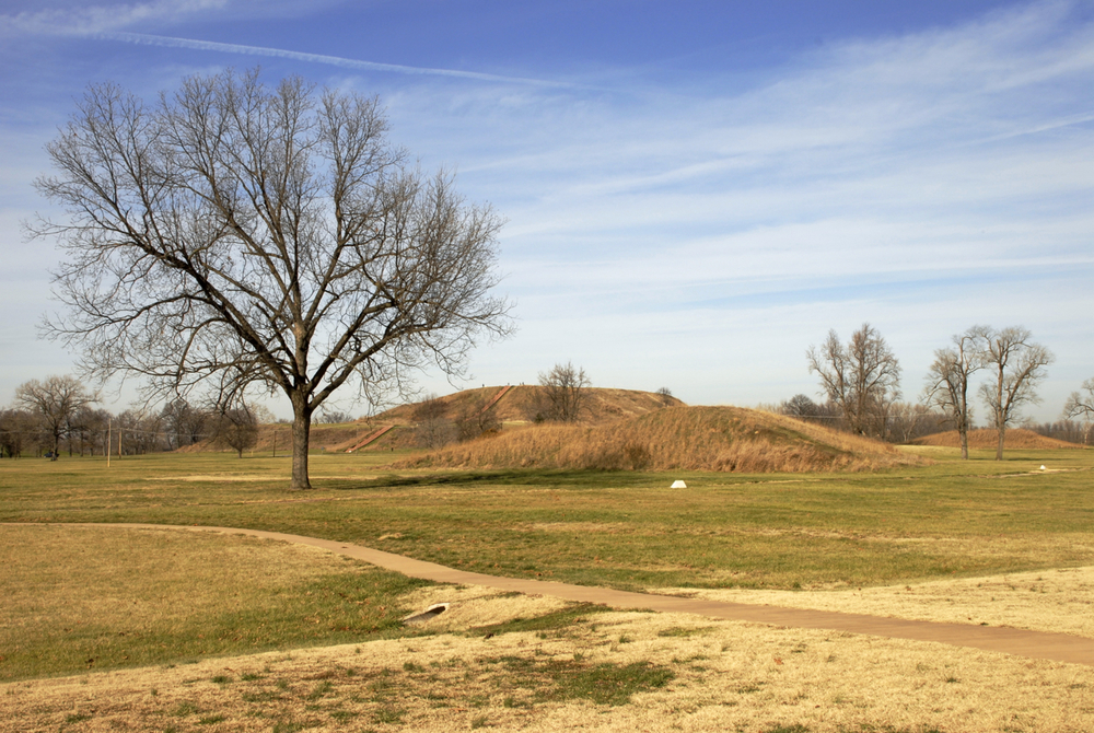 Monks Mound in the distance