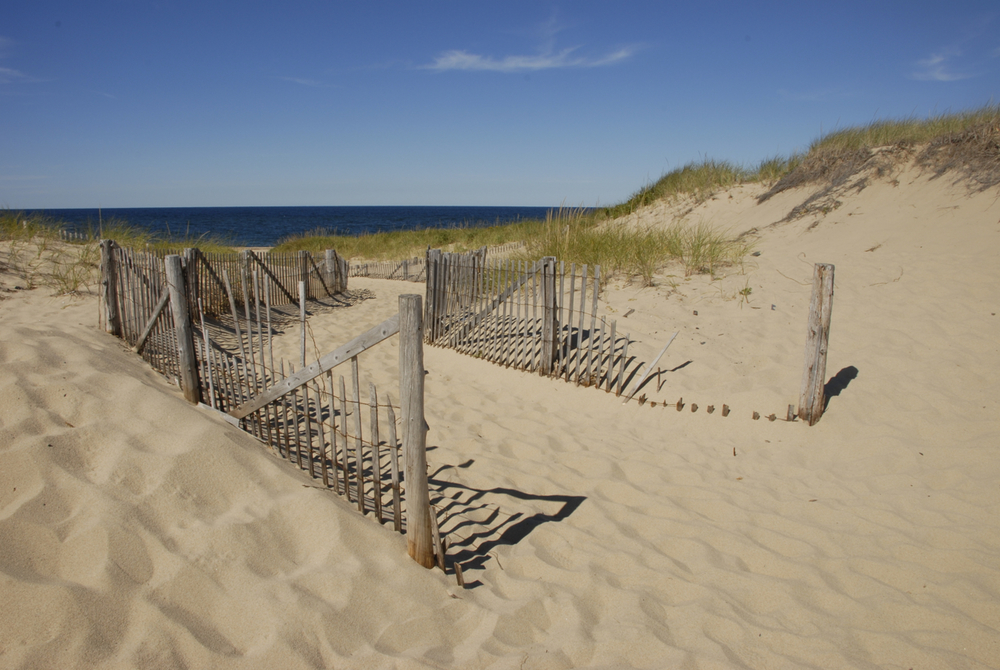 Race Point, Cape Cod