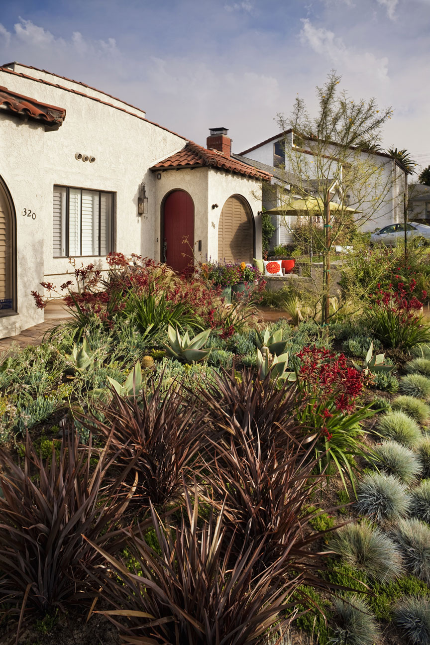 Plant material can often times take architecture and soften the edges and straight lines offering some curb appeal.  Color and texture are important, yet choosing the correct plant type for the space is the goal for optimum growth and longevity.