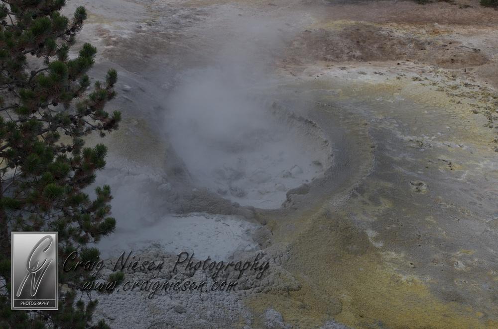 Sulphur Caldron, Yellowstone National Park