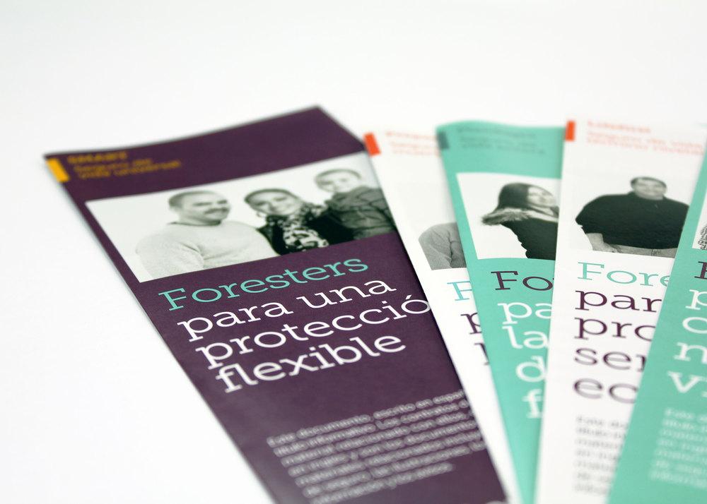 Spanish Consumer Brochures