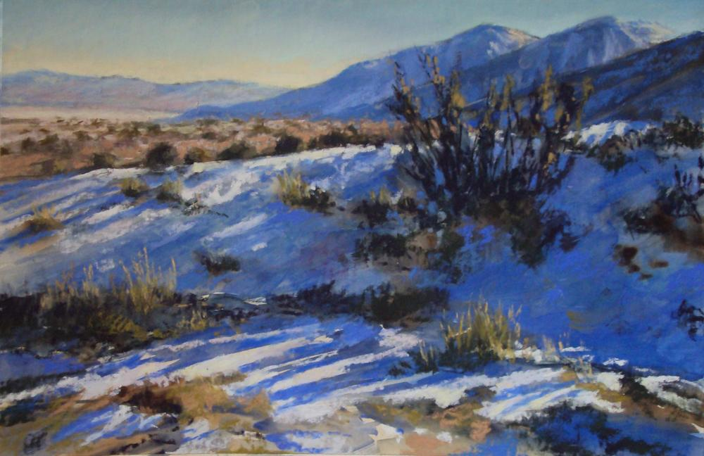 Winter Shadows by Fran Nichols