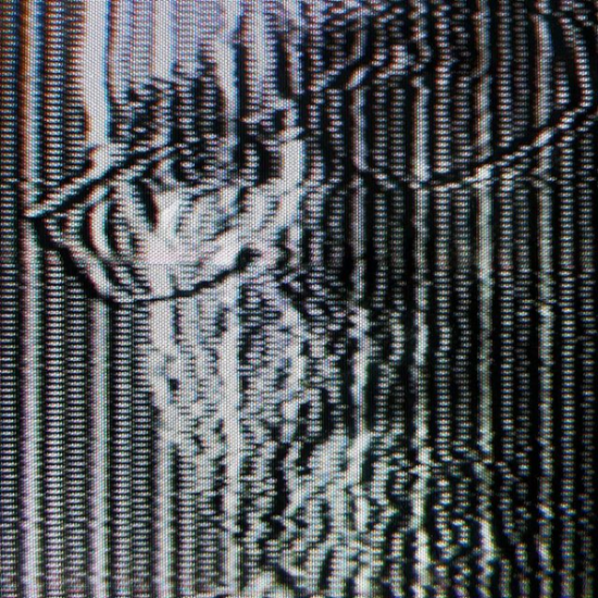Self Portrait Detail by Media Artist Benton C Bainbridge            Analog/digital media made with video synthesizer/image processor
