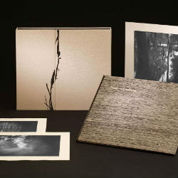 Southern Landscape, Sally Mann & John Stauffer/21st Editions