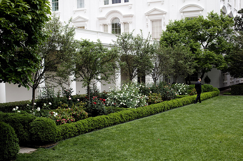 3582757247_27e41bdcbc_white_house_rose_garden(1).jpeg