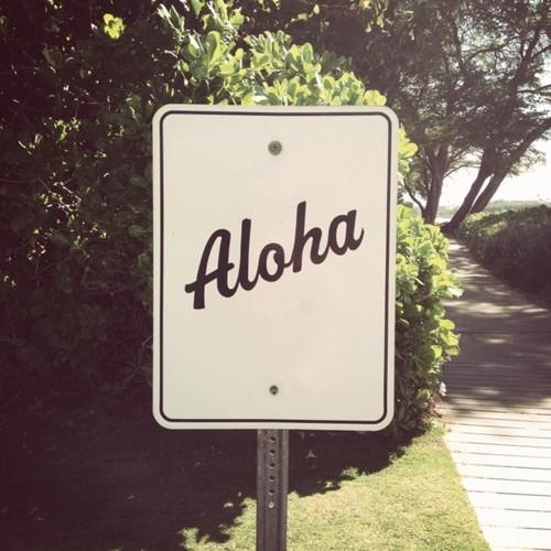 aloha.jpeg